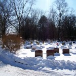 animal cemetery in hinsdale, illinois