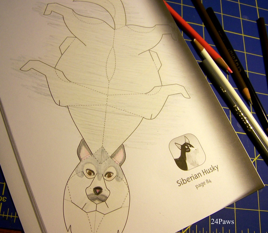 coloring husky dog origami template